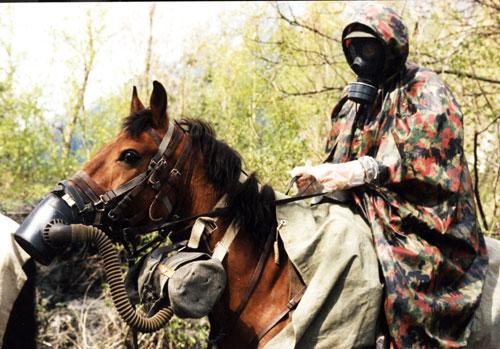 Pferd Gasmaske